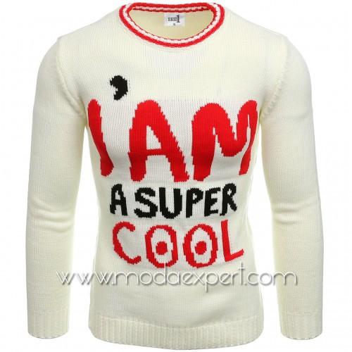 Мъжки пуловер COOL №E3590-E